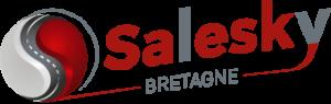 Logo Salesky Bretagne